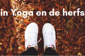 Yin Yoga en de herfst